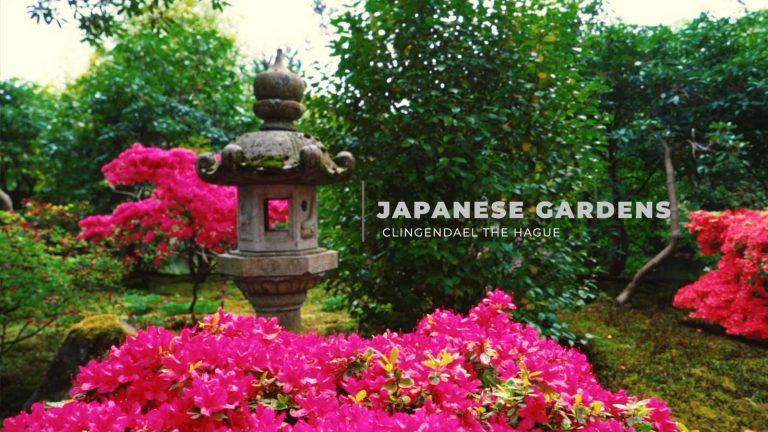 Clingendael & Japanse tuinen