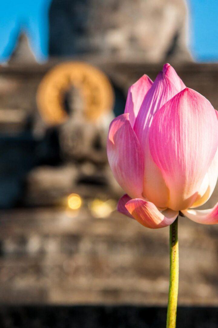 Bloemen bij kleine tempel Bali