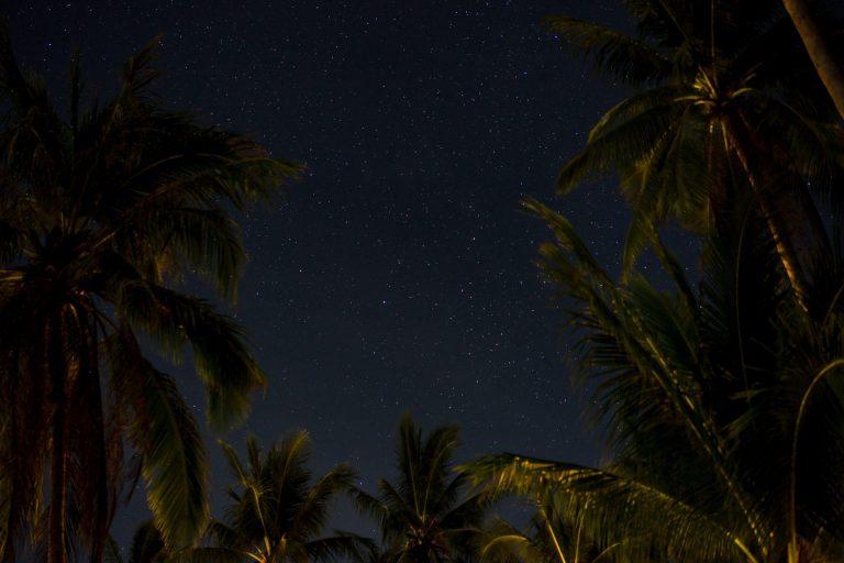 Koh Tao sterren en palmbomen