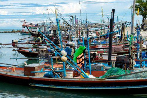 Vissersboten op Koh Samui