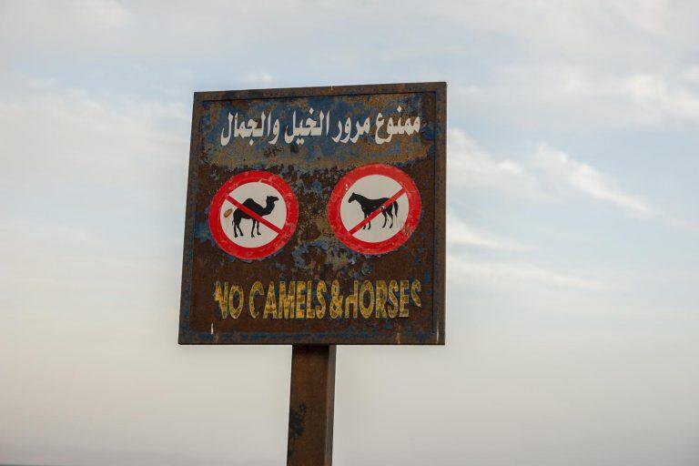 verboden voor paarden en honden