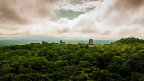 Guatamala Tikal maya site overlooking the temples in the jungle which stretches for miles and miles