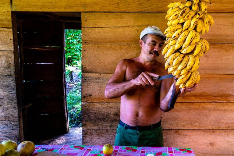 Up in the mountains near Baracoa, this man has a small fruit stop before the real climb on the Anvil begins.