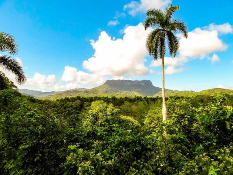 Hoogste berg in dit deel van Cuba. Baracoa. Staat bekend om de 7 leugens